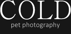 Cold Photography logo